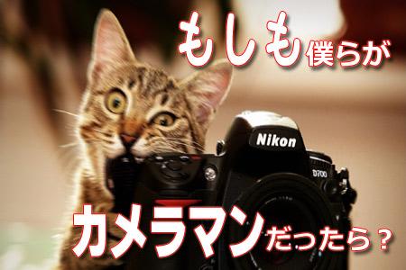 もしも僕ら三人社長がカメラマンだったら?